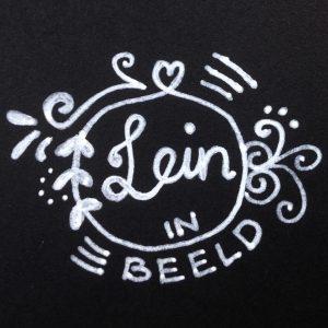 logo lein in beeld